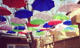 La photo du jour: parapluies suspendus au jardin