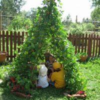 Fabriquer un tipi de jardin avec des haricots grimpants