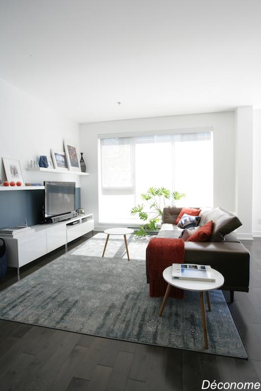 Délimiter un salon avec un grand tapis. Demi mur peint en bleu