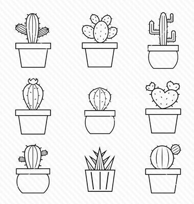 cactus facile a dessiner / DIY cactus illustration