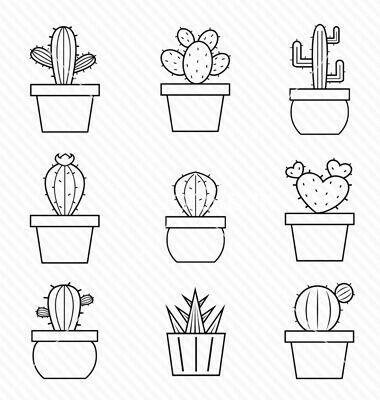 cactus a dessiner / DIY cactus illustration