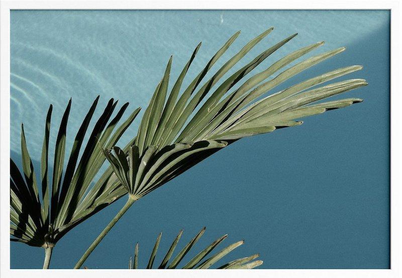 Photo palmier pas cher à downloader - Affiches The Printable Concept