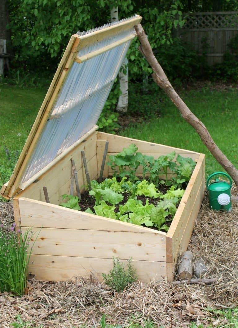 Comment Fabriquer Un Chassis En Bois jardiner avec une couche froide ou châssis froid - déconome