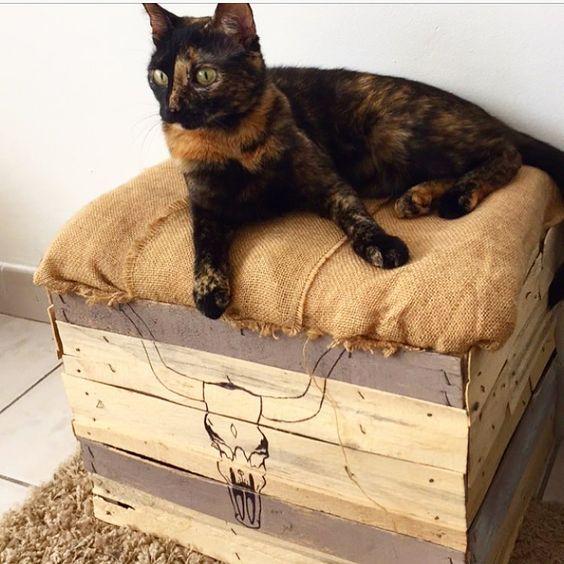 DIY pouf pour chat en jute et cagette