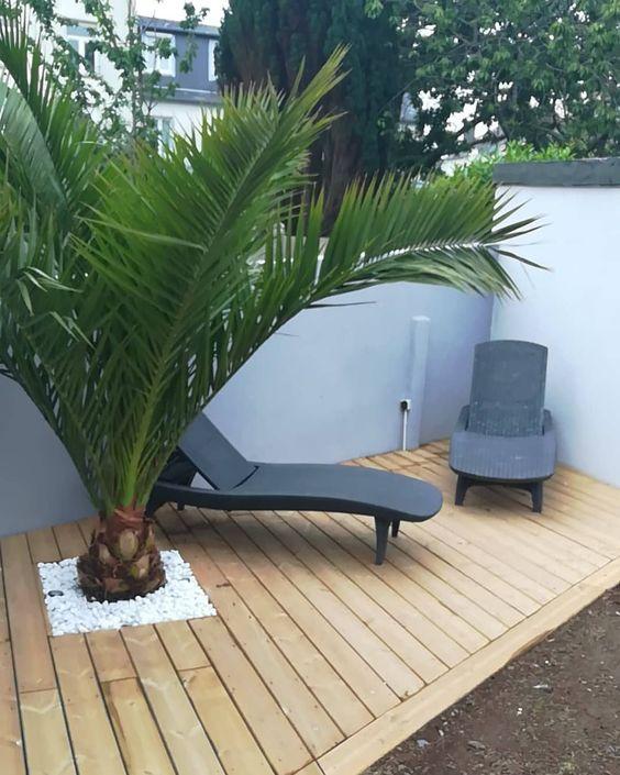 terrasse en bois au sol avec palmier encastré et chaises longues noires design