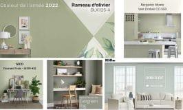 couleur tendance 2022 vert sauge